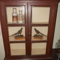 Klein display cabinet